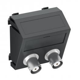 2x BNC Anschluss, 1 Modul, Auslass schräg, als 1:1 Kupplung, schwarzgrau